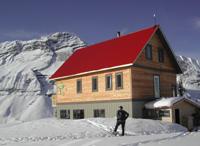 Campbell Glacier
