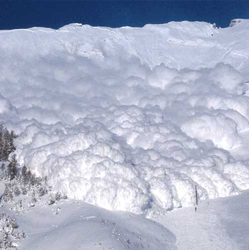 powder canada avalanche