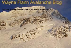 Wayne Flann Avalanche Blog