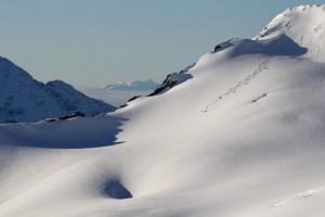 wiegele heli skiing