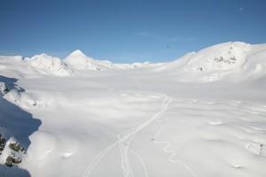large glacier with sled tracks