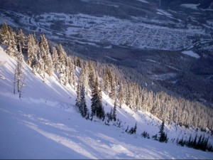 Mt Fernie avalanche 2
