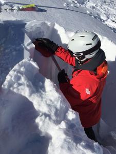 Whistler-snowpack