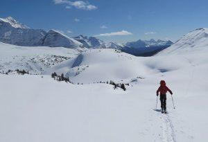 backcountry-skiier-jasper
