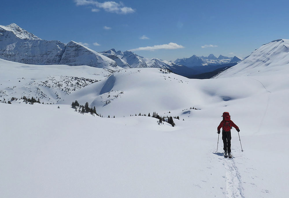 backcountry-skiier-jasper
