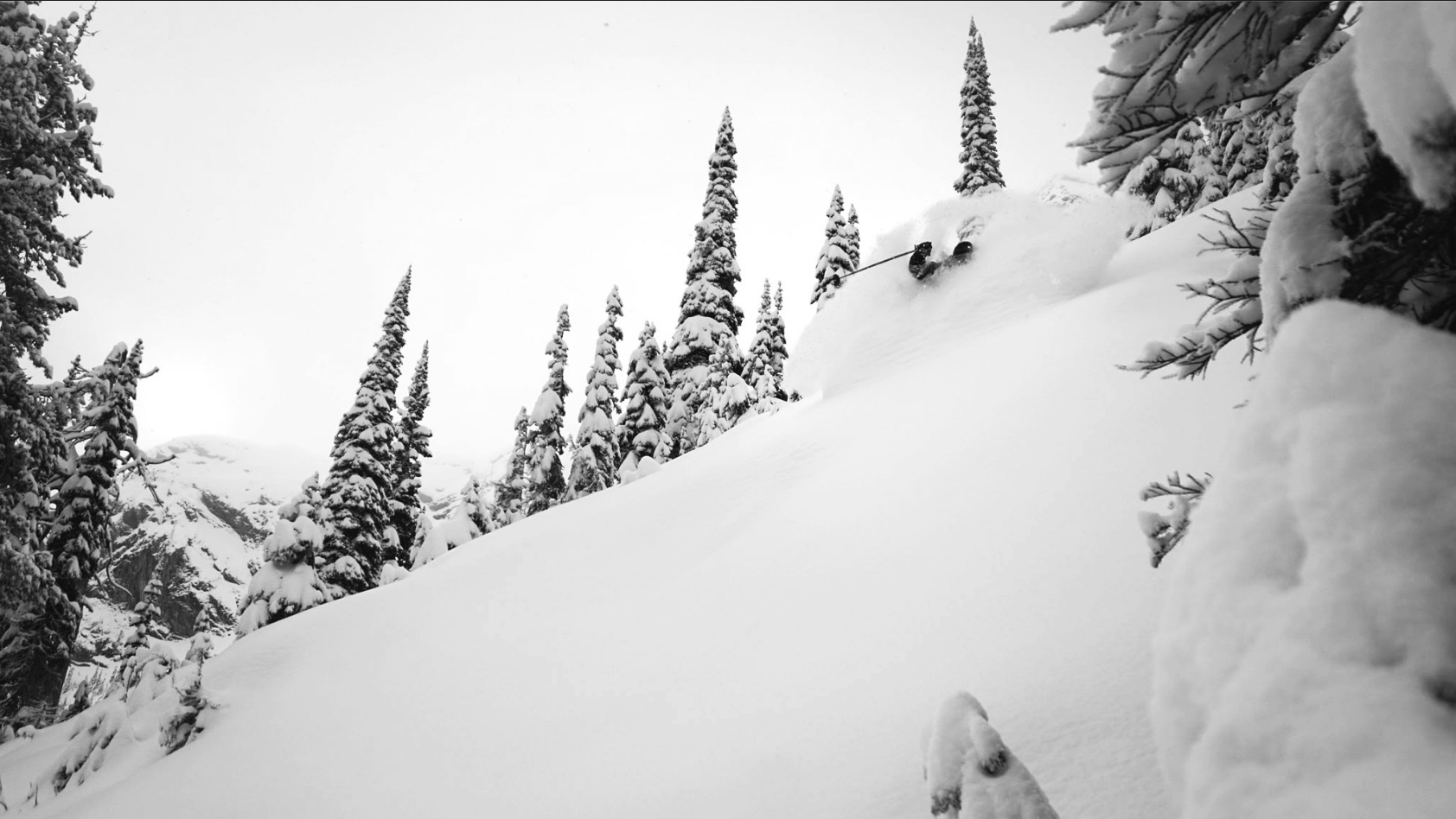 Fernie Powder Nov 17