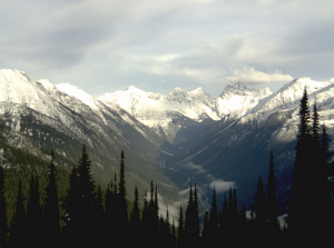 Rogers Pass weather cam