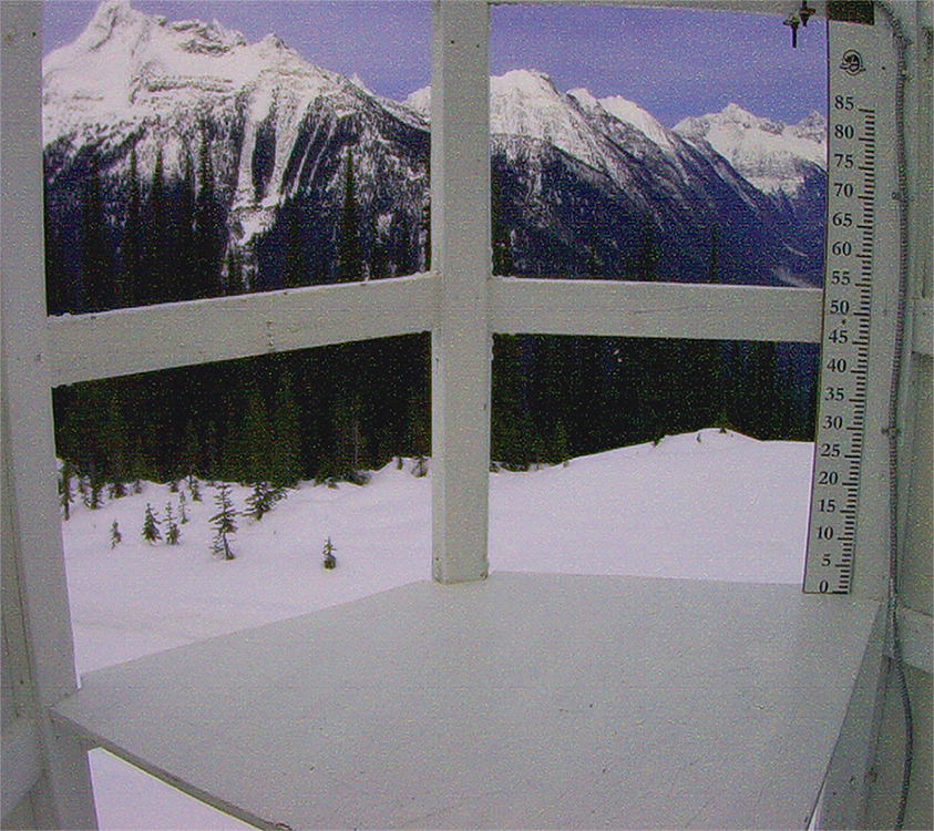 Rogers pass snow board
