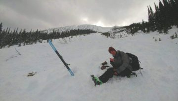 Avalanche Survivor: Love & Life