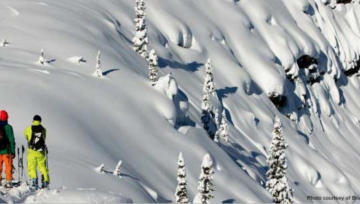 Ski Guides Sued over Avalanche Fatality